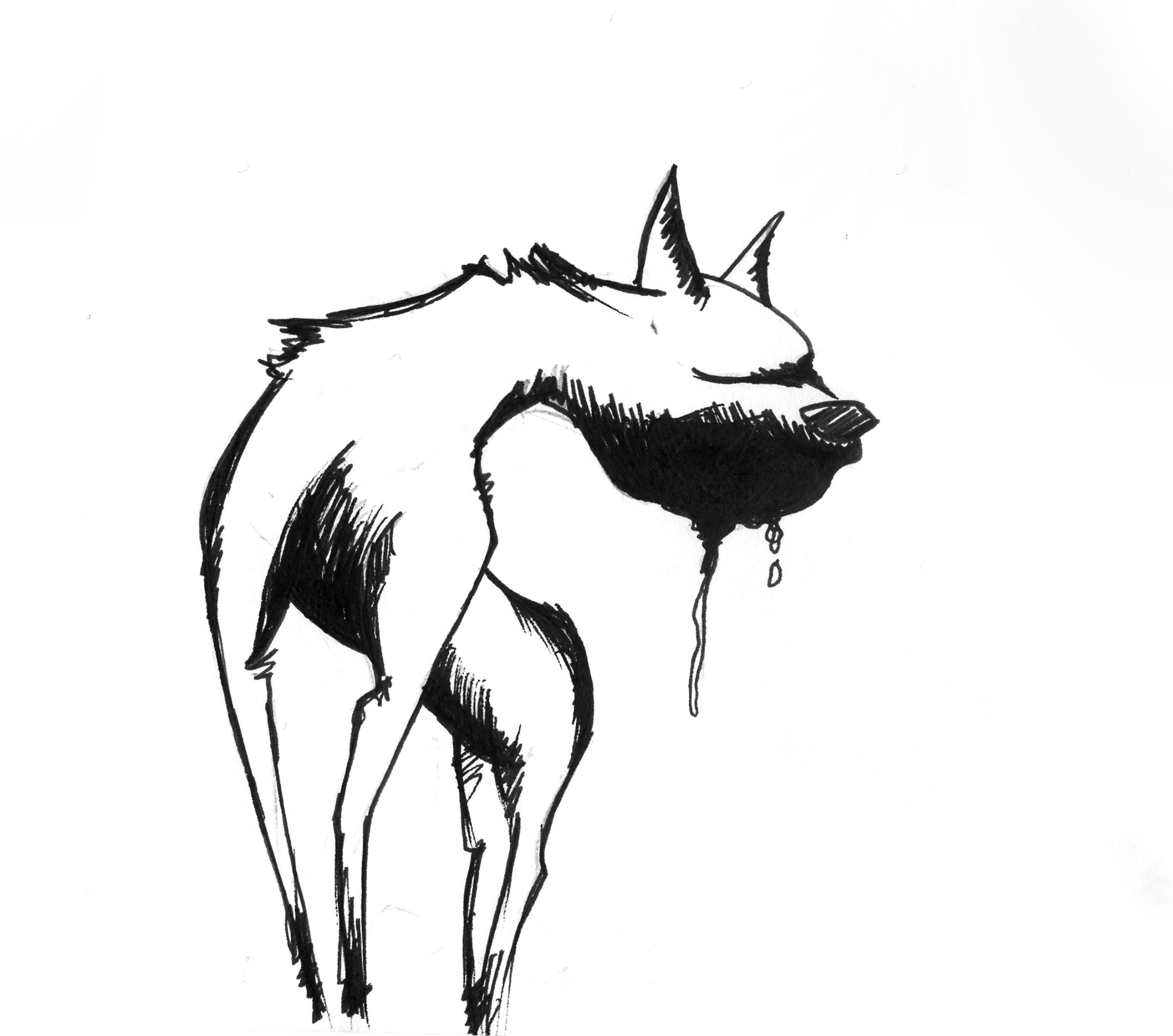 art-digitalart-tiffysoso-fotografie-dog