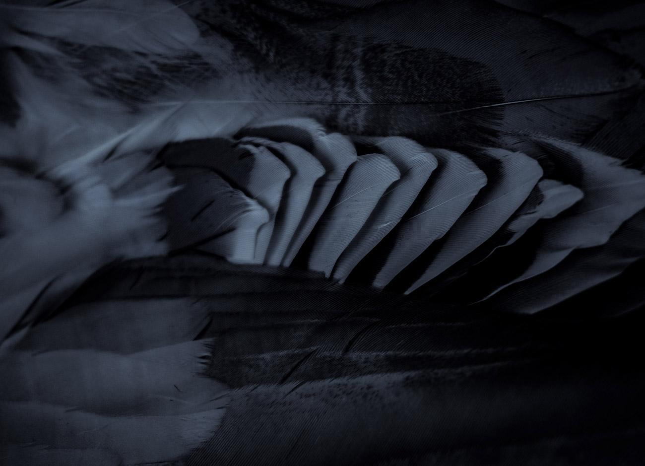 beitragsbild-tiffysoso-fotografie-photartografie-silentblack-ressort